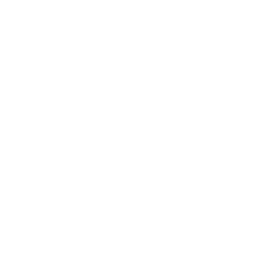 custom website design and optimization